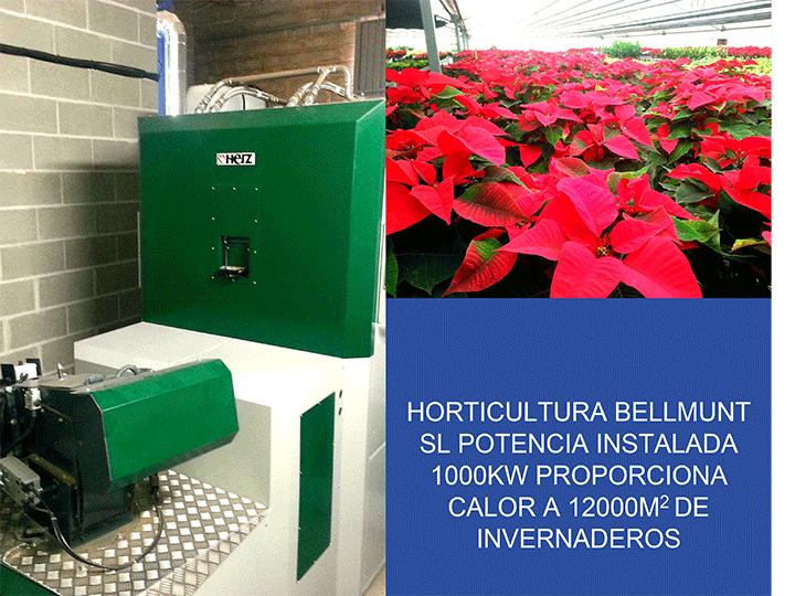 biofor_instalaciones22